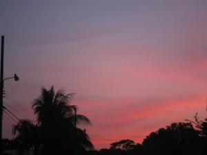 Beautiful pink sunset in Puerto Jimenez